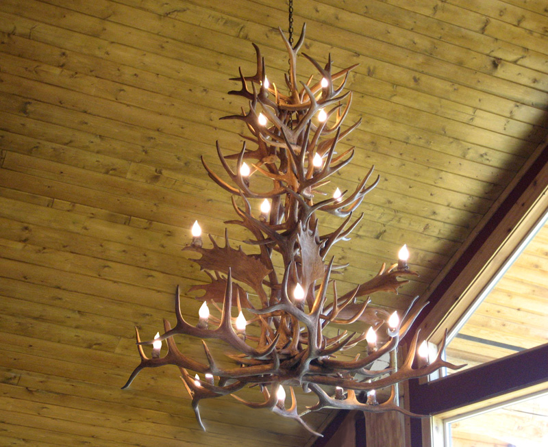 Details About Elk Mule Deer Fallow Faux Antler Chandelier Rustic Lights 21 Lamps Lr 24