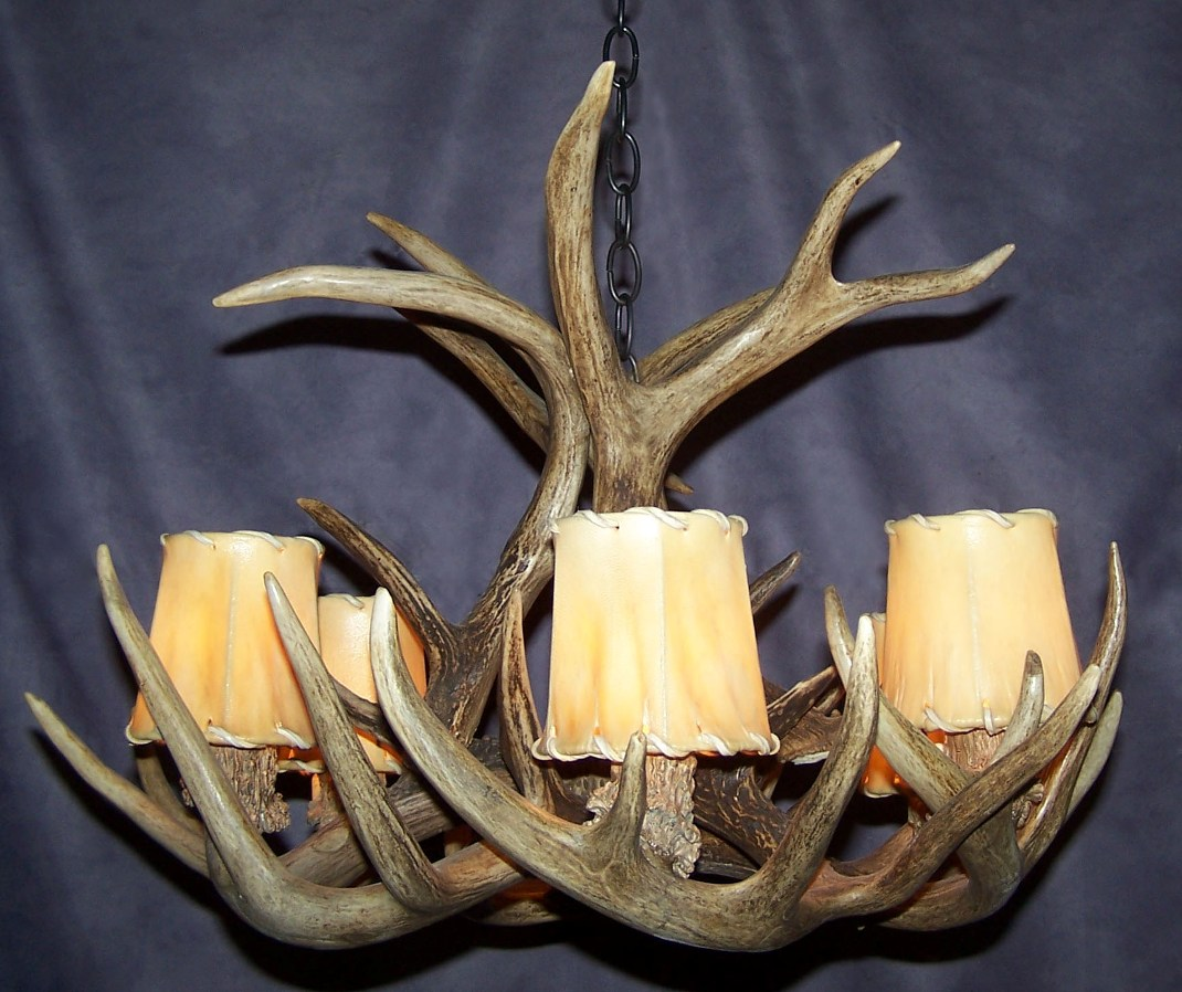 about whitetail deer real antler chandelier 6 lamps rustic lighting