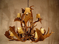 Carolina Fallow Deer Real Antler Chandelier SP-5