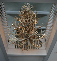 Real Antler Four-Tier Elk / Mule Deer / WhiteTail Chandelier