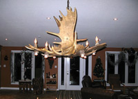 Moose Pool/Dining Table Chandelier