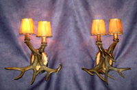 "Should be ""Real Antler 2 Light White Tail Deer Sconce"