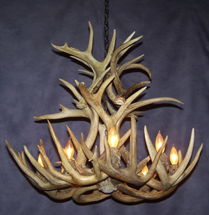 Real Antler White-tail Cascade Chandelier SRS-10