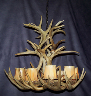 Real Antler White-tail Cascade Chandelier