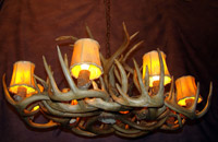 Large White Tail Deer Oblong Chandelier Shown with Optional Shades