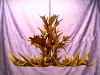 Elk / Fallow / Mule Deer Dining Room  / Pool Table Chandelier