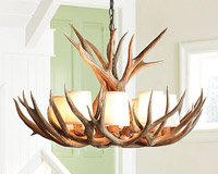 Large Mule Deer Chandelier with Optional Parchment Shades