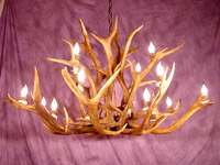 Large Inverted Elk Chandelier