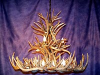 Large White Tail/Mule Deer Chandelier