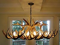 Large White Tail Deer Oblong Chandelier