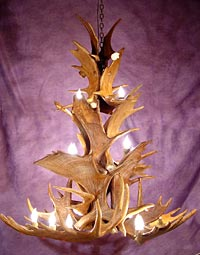 Moose Antler Chandeliers