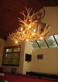 Mule Deer Oblong Inverted Pool Table Chandelier