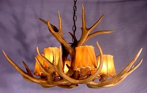 Real Antler Mule Deer Chandelier Special SP-1