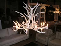 Sun Bleached Elk Inverted Chandelier