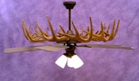 White-Tail/Mule Deer Ceiling Fan Chandelier